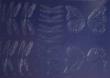 CAKECGD-DRFY - Dragonfly Gelatin Veining Sheet