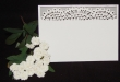INCR1051 - Pack of 10 Lace Place Cards