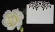 INCR1043 - Pack of 10 Love Vine Place Cards
